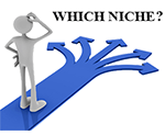 choose-niche-decisions-website-blog
